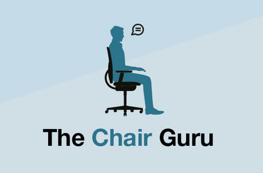 Chair Guru: How do I convince my boss to get ergonomic chairs?