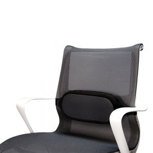 I-Spire Series™ Lumbar Cushion
