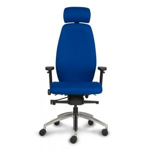 Positiv Plus (high back) Ergonomic Office Chair