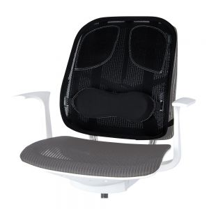 Professional Mesh Back Support
