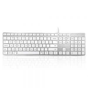 Accuratus 301 Mac Keyboard - birdseye view