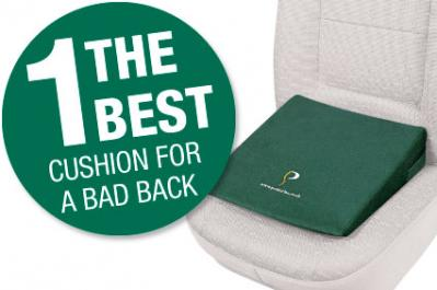 Spend £100 online and we'll give you the Daily Mail's top-rated cushion FREE