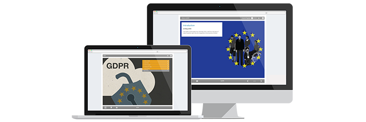 General data protection regulations (GDPR) e-learning course screenshot